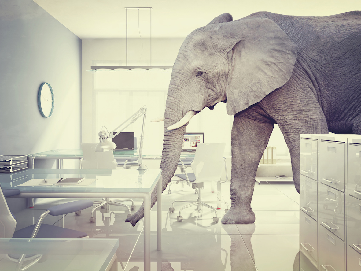 Is the elephant in the room destroying your IT projects?